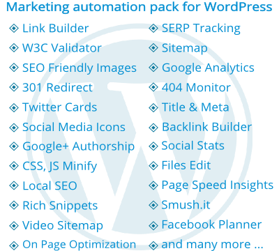 professional marketing automation service for existing WordPress website